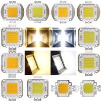 10W 20W 30W 50W 80W 100W High Power Great Bright LED Light Lamp Chip Chips