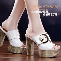 2014 Summer Fashion shoes Fish head shoes Thick Heel women sandals DunHu606
