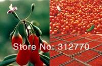 2 KG,EMS FREE SHIPPING!!  Top Goji Berries Pure Bulk Bag Certified ORGANIC,Green food