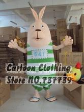 rabbit mascot promotion