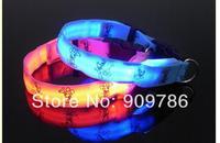 wholesale 60pcs/lot new arrival fashion cartoon flashing Dog collar LED cute pet collar
