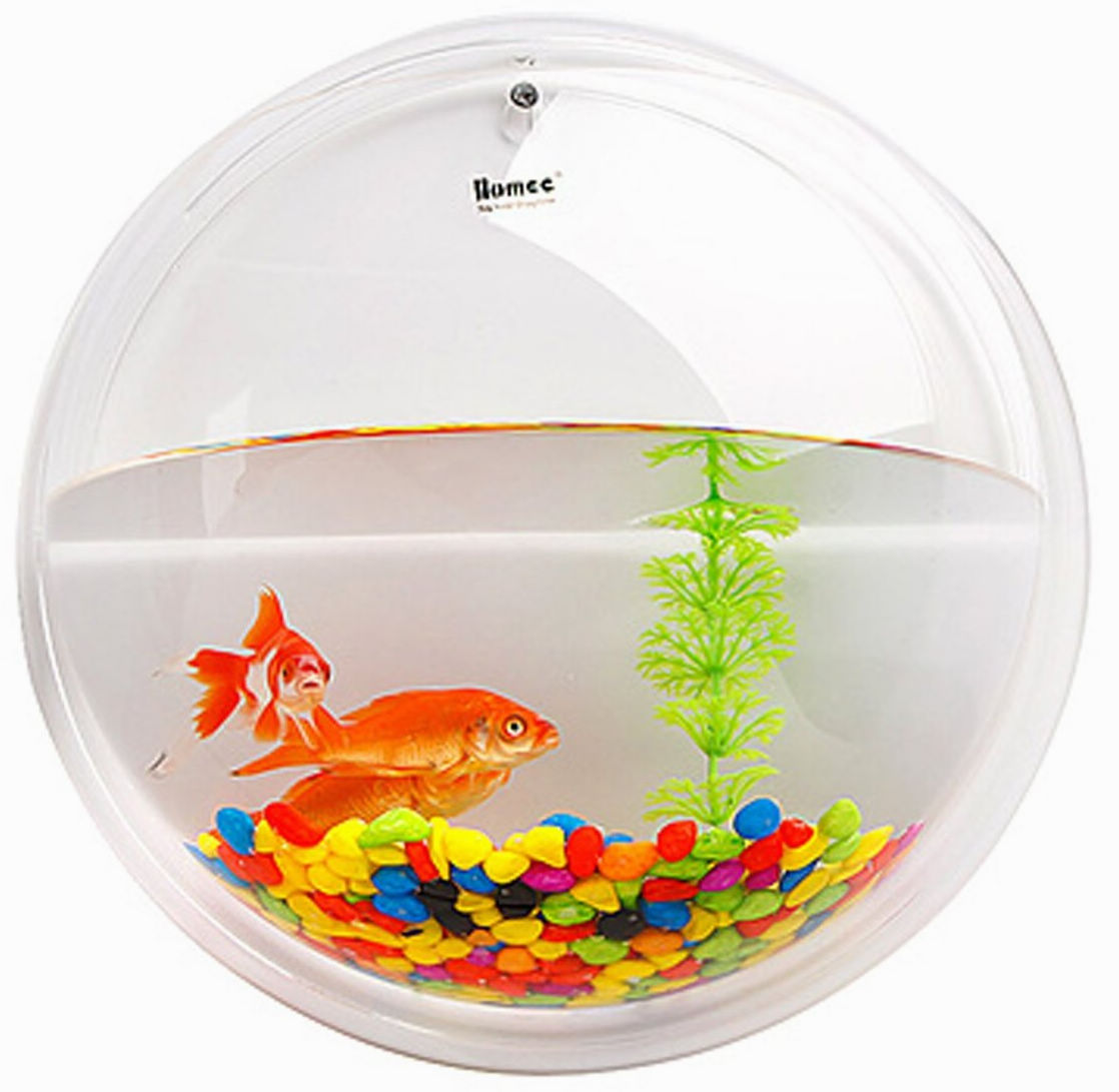 Decorative Fish Bowl Promotion Online Shopping For Promotional Decorative Fish Bowl On