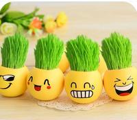 Free Shipping New 2014  Pot Culture Gift Radiation Protection 2PCS /LOT Novel Plants Office Desks Decoration Green Bonsai