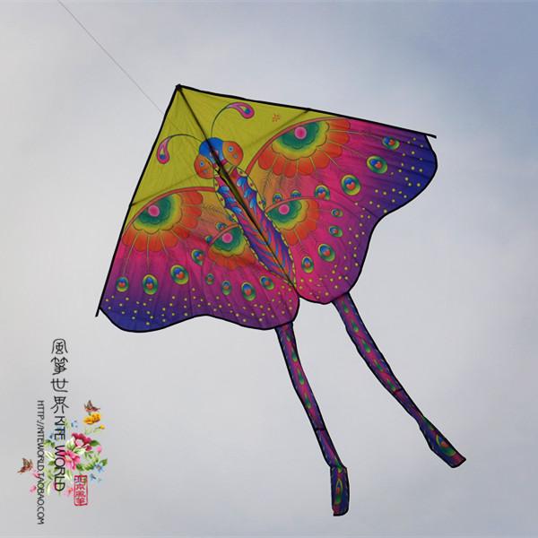 Beautiful and large butterfly modern kite delta kite(China (Mainland))