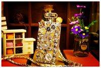 For Samsung Galaxy S5 i9600 Case Luxury StoneDiamond  Perfume Fashion Hanging For S5 V i 9600 9605 Skin Lady Gift Hot Wholesale