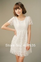 2014 Summer New Style Fashion Elegant Sexy Bodycon Sleeveless  Lace Dress Women Club Dresses XS~XX