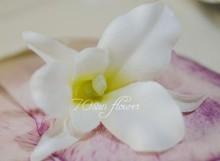 wholesale orchid flower