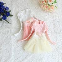 children's clothing long-sleeved dress girls dress veil princess dresses Free Shipping