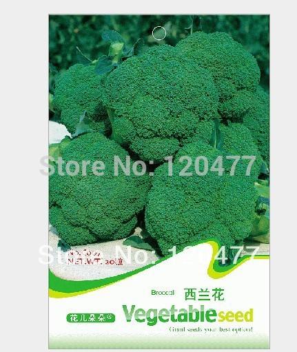 sementes de brócolis, sementes vegetais - 20 partículas