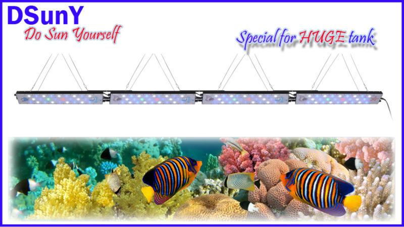 Dsuny Daisy Chain Aquarium