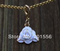 Dangle for Floating Charm Living Locket Chains & Charm Bracelets e861(Mix minimum order $10)