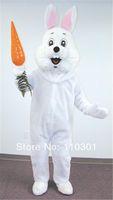 Lovely Easter Bunny Rabbit Animal character mascot costume school mascot fancy dress costumes
