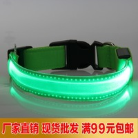 Luminous pet supplies 2.0 width led transparent led collar dog collars dog chain dog ring