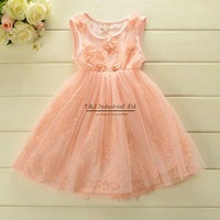 Chirldren 2014 Girl Dress Rose Chffion Drese Princess Party Dresses Ball Girls Dress Kids Clothes Baby Wear