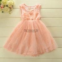 Chirldren 2015 Girl Dress Rose Chffion Drese Princess Party Dresses Ball Girls Dress Kids Clothes Baby Wear