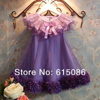 Newest!!!2014 Spring Girl Summer Fashion Ruffles Formal Lace TuTu Dress Fress Shipping 5Pcs/a lot T015