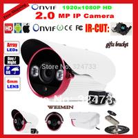 Onvif H.264 2.0 MegaPixel Fulll HD 1080P 1920x1080 Resolution Array IR Outdoor IP Network Camera