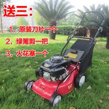 wholesale lawn mower gasoline