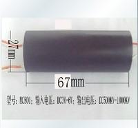 High voltage generator high pressure bag capacitor inverter transformer high voltage pulse module 800kv