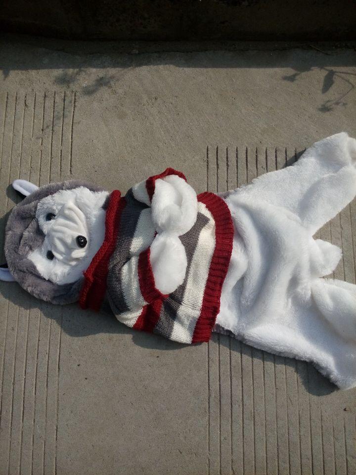 55cm Husky dog skin plush toys, teddy bears hull. Large animal coat factory wholesale(China (Mainland))