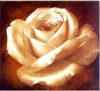 Free shipping DIY Diamond Painting painting roses C Rhinestone Kits Diamond Embroidery Set