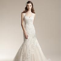 2014 NEW spring Haute Douture spaghetti strap small fresh sweet lace wedding dress fashion elegant slim fish tail free shipping