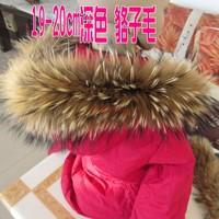 Raccoon fur collar scarf muffler scarf cap of vigoreux fur mule wool