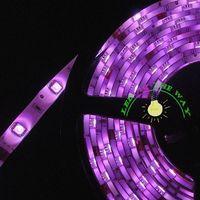 Non-waterproof  IP20 5050 SMD RGB 5M 60 Leds/M 300 leds DC 12V CE&RHOS Past Total LED Strip Light Free Shiping