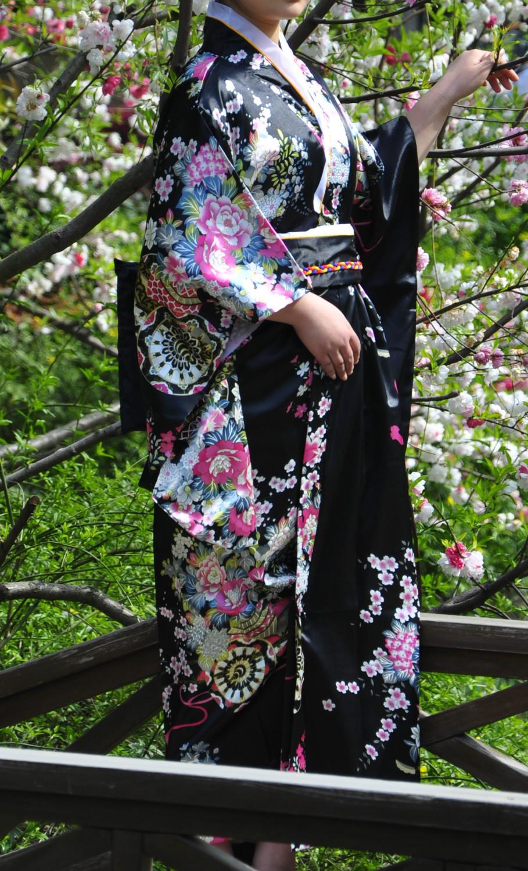 สีดำเกอิชาญี่ปุ่นกิโมโน
