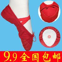 Child adult dance shoes practice shoes cat shoes dance shoes