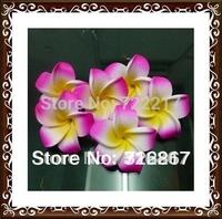 100X fuschia  Plumeria flowers Hawaiian Foam Frangipani Flowers wedding party decor