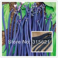 Black Gold Kidney Bean (Phaseolus Vulgaris L)  Seeds Home Garden Health Vegetable French bean 30 pcs Free Shipping