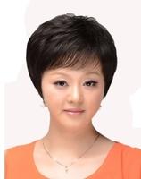 100% BRAZILIAN H HAIR wig  shortr style 2014 style wig---Alberta