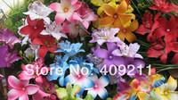 FREE SHIPPING KL956  18.5X11.5CM  Silk Bridal Orchid hair clip w 2pcs Foam plumerias&white pearls+ 80PCS/LOT 10 colors mixed
