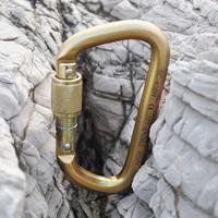 Outdoor Climbing equipment supplies CE certified40 KN D type steel safety hooks quick release lock f Mountain Rock Ice Climbing