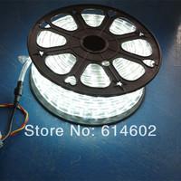 FREE SHIPPING 220V High voltage 5050 led flexible strip light Power plug,warm white/cool/blue,60led/m,14.8w/m,waterproof IP65
