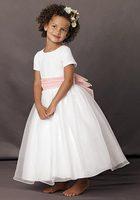 Short Sleeves Scoop Neckline Organza Tea Length Flower Girl Dress