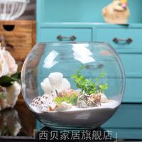 Modern transparent glass fish tank ball vase goldfish bowl hydroponic flower home decoration