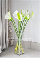 Glass square cylinder vase flower transparent glass brief modern fashion brief elegant luckybamboo floor vase
