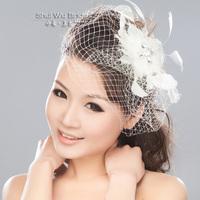 Feather gauze hair accessory bridal hair accessory lyrate flowers banquet fedoras hairpin veil