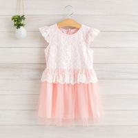 2014 New summer,girls princess dress,children lace dress,embroidery,pink/blue/yellow,2-8 yrs,5 pcs / lot,wholesale,1103