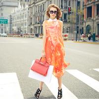 PRASE Womens 2014 European station Hitz Digital Print Chiffon Dress autumn dress