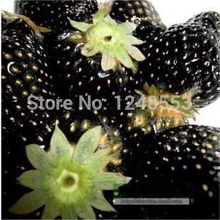Promotion!!! 600 pcs/ 24 kinds strawberry seeds green black blue orange white red pink + rose seeds for gifts, B