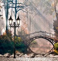 5X7ft Arch bridge backgrounds galinha pintadinha fotografia for photo studio vinyl backdrop photography backdrops background
