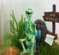 Free  shipping aquarium fish tank pneumatic decorations  skeleton  on  toilet