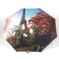 2014 free shipping 43-inch fashion romantic automatic oil painting umbrella women's girl's travel umbrella