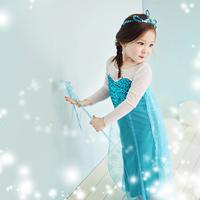 2014 New  elsa girls princess dress Elsa's and Anna's dress birthday dress  Elsa Dress  for Children