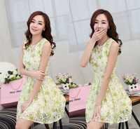 2014 Fashion Elegant Women's Dresses Slim Waist Sleeveless Tank Lace One-piece Dress Female Sexy Sundress Vestidos