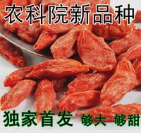 free shipping China Ningxia wolfberry king super 5A 150pcs 50g tribute medlar fruit Gou Qi 500g