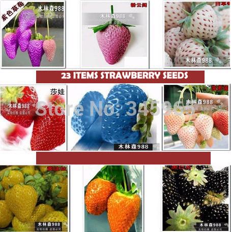 2300 pcs (23 colors ) strawberry seeds fruit strawberries seeds flower seed garden indoor DIY Garden bonsai flower pots planters(China (Mainland))